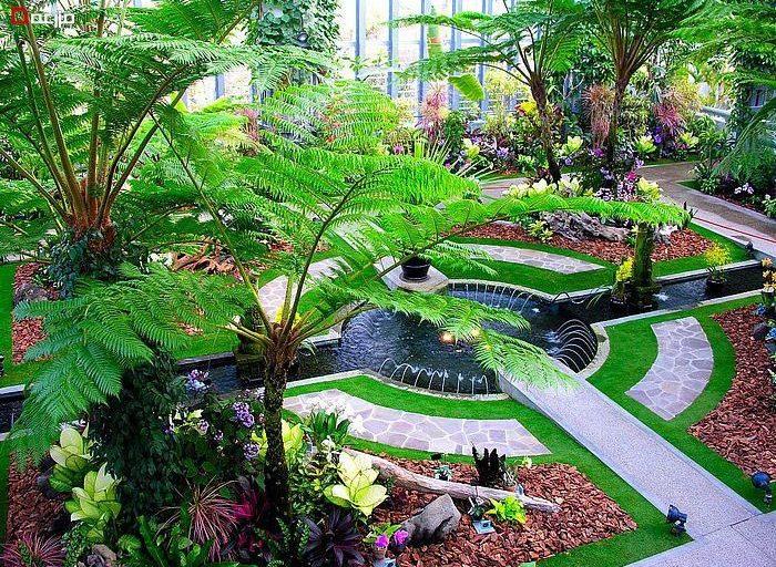درختان مناسب در طراحی باغ و فضای سبز