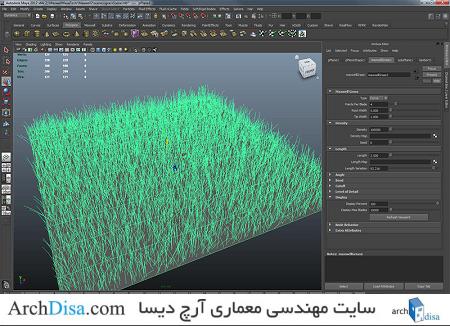 maya_grass