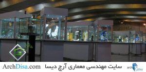 mozeazadi